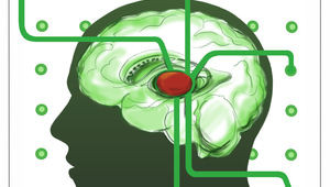 A Gene In The Brain Helps Us Filter Out Distracting Information   Popular Science - Health Council