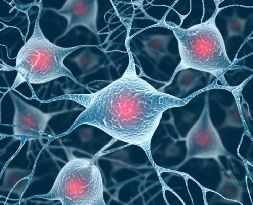 Parkinson's: researchers discover point at which protein harms brain cells - Medical News Today - Health Council