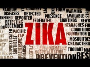 The Latest Update on the Zika Virus - Health Council