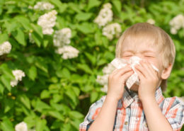 Easing Your Child's Allergies - Health Council