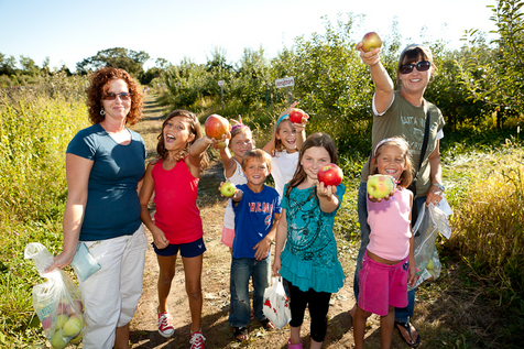 Apple Holler's Pick Your Own Apples