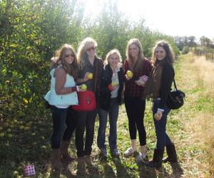 Apple Holler's Group Apple Picking Tour