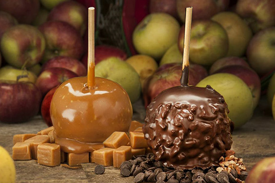 Apple Holler's Delicious Caramel Apples
