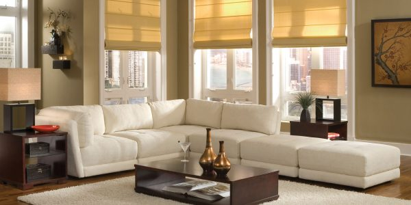 Amazing Living Rooms With Sectionals With White Sofa Design Ideas Pictures For Living Room For Small Sectional