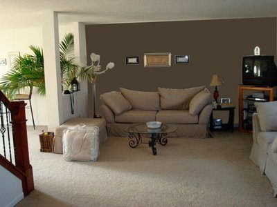 Beautiful Accent Wall Color Ideas With Innovative Ideas Living Room Paint Ideas With Accent Wall Nonsensical Color Living Room Accent Wall