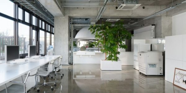 Fresh Cool Interior Design Ideas With Cool Office Designs Best Designer Hong Kong Office Cool Design Ideas Cswtco