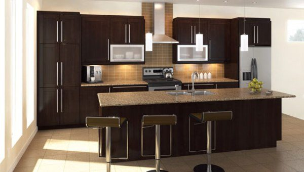 Amazing Home Depot Kitchen Designs With Home Depot Kitchen Design Collections Fabritec Eurostyle