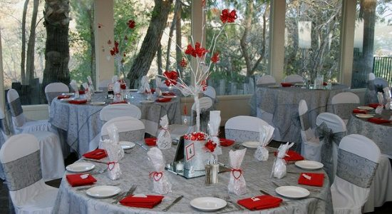 Silver Wedding Anniversary Party Decoration Red Accent