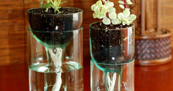 Good Creative Home Interior Design Ideas With Creative DIY Planter Idea Made From A Glass Bottle