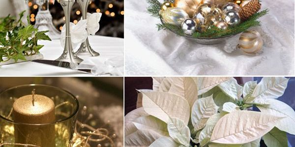 IDEAS FOR MAKING YOUR FRESH AND LIVELY CHRISTMAS WEDDING WITH FRESH POINSETTIA