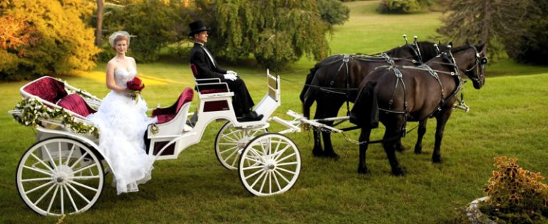 Make your fairytale come true with a Cinderella-style carriage