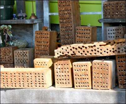 Orchard mason bee houses