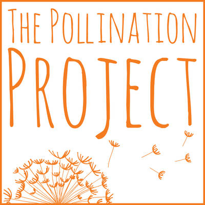 Pollinationproject square orange