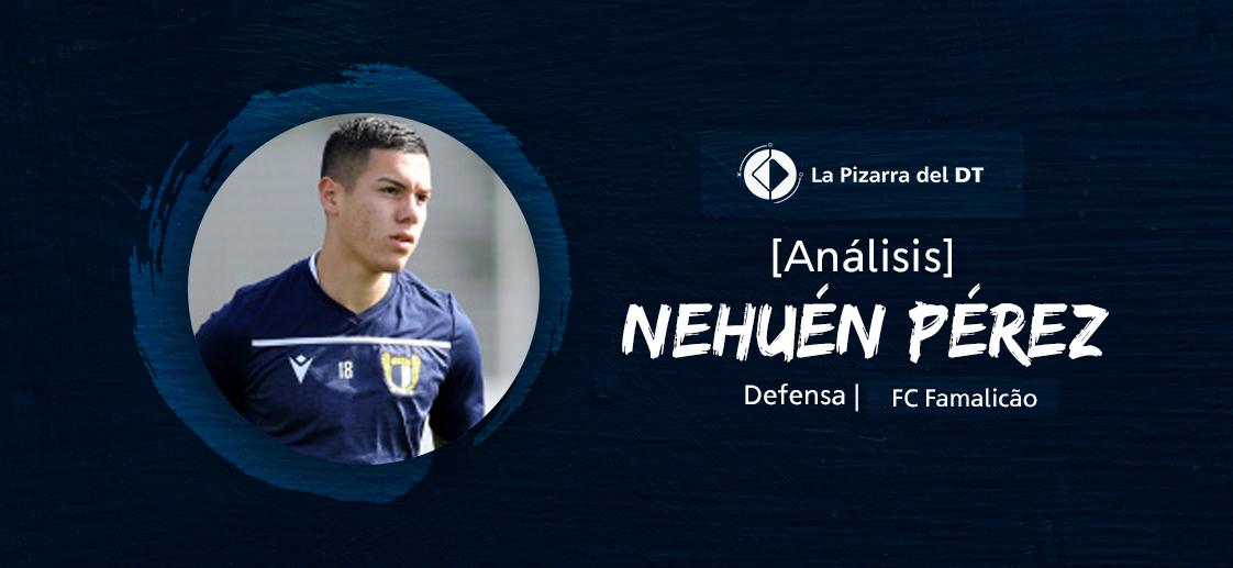 Nehuen2