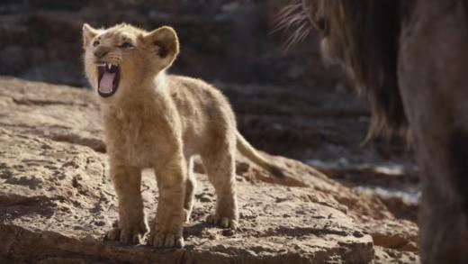Visionnement: The Lion King