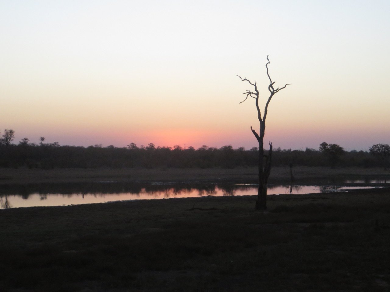 Sunset on the Savanna