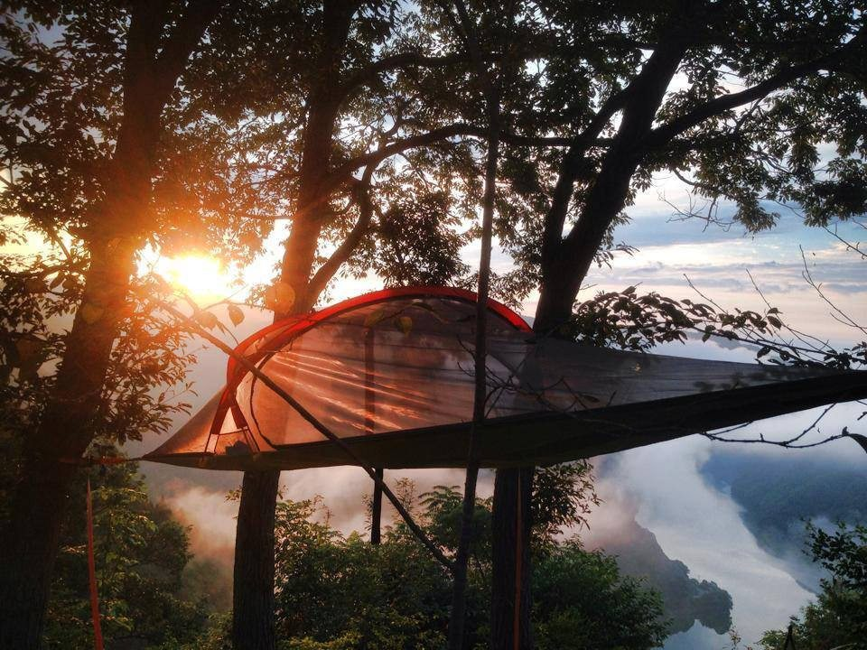 Portable Tree House : Tentsile the portable tree house rvshare