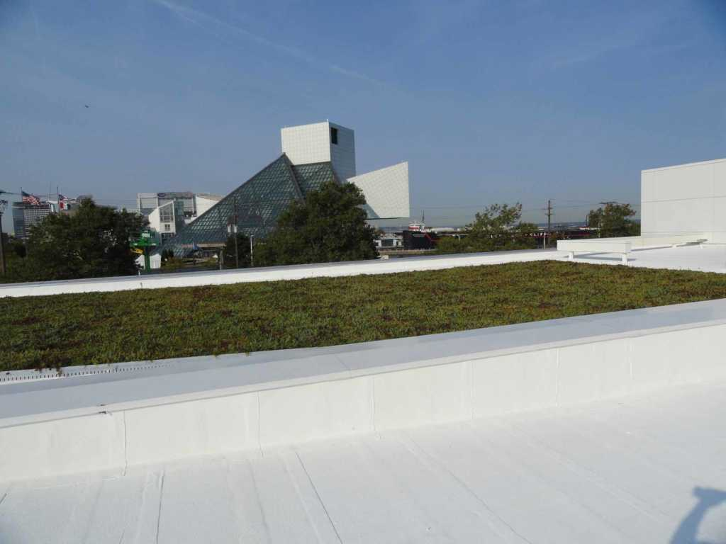 Roofing-USCG-Green-Roof (2)
