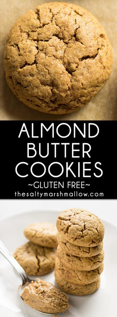 Almond Butter Cookies - The Salty Marshmallow