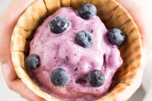 Healthy Blueberry Blender Ice Cream