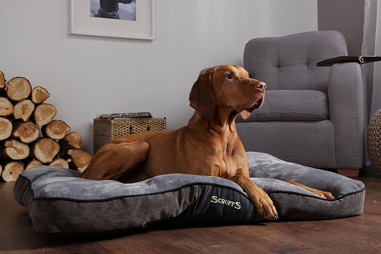 beste hondenkussens van 2019 vergelijking en goedkope prijzen. Black Bedroom Furniture Sets. Home Design Ideas