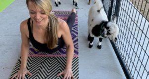 Goats, Yoga, Lakeland, Fitness, Valentines