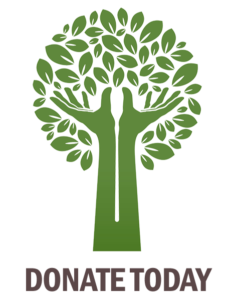Donate to Trees for You & Me