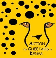 Action for Cheetahs in Kenya logo