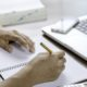 Cognitive Function Worsened by Dull and Dirty Workplaces - Health Council