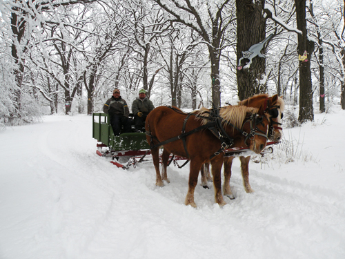 Apple Holler's Horse Drawn Sleigh Rides in Chicago and Milwaukee area