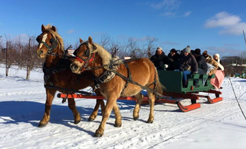 Events and Entertainment - Sleigh Rides