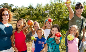 Field Trips - Apple Picking