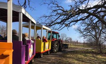 Farm Park Tractor Train Rides