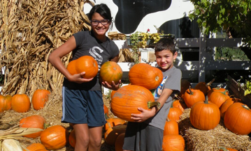 Fall Pumpkin Picking Festival