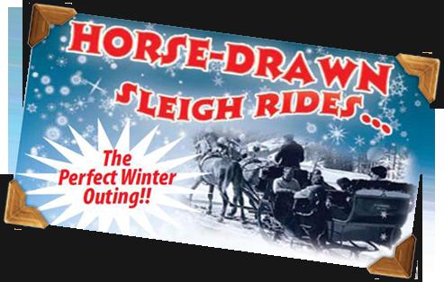 horse drawn sleigh rides poster