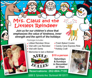 Mrs Claus and The Littlest Reindeer