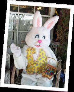 Big Bunny on the porch