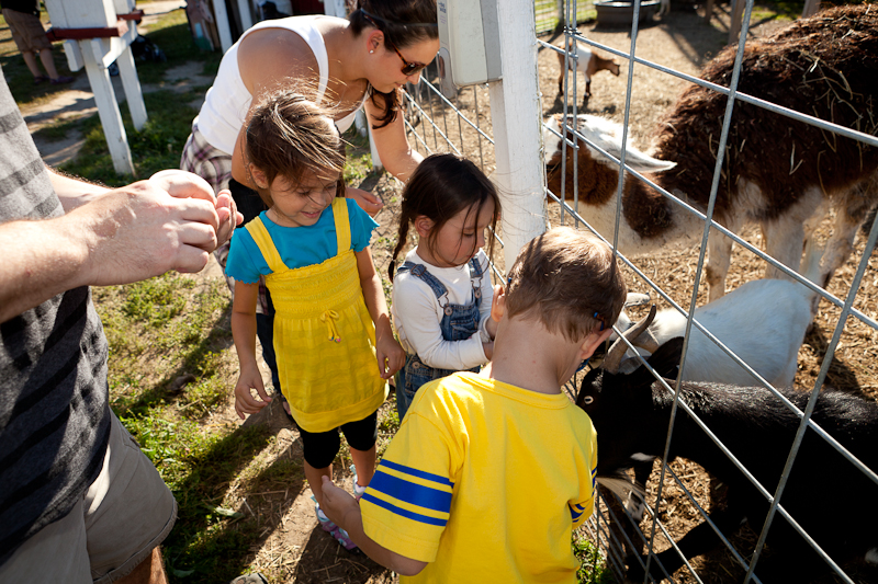 Children and adults hand-feeding goats at Apple Holler