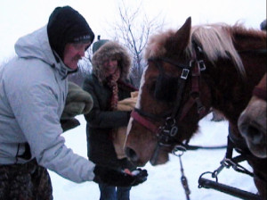 Hand Feeding a Horse in Winter