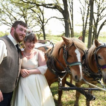 Apple Holler wedding with horses