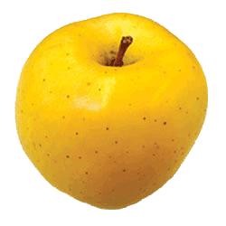 Apple Holler Blondee Apple