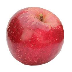 Apple Holler Jonathan Apple