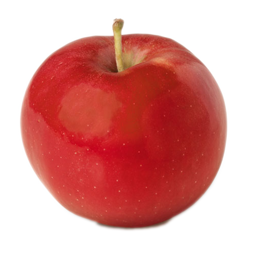 Ida Red Apple