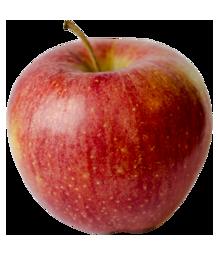 Apple Holler Cameo Apple