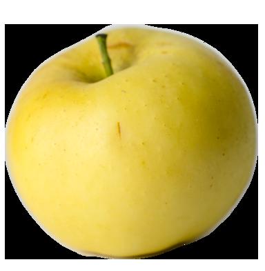 Apple Holler Pristine Apple