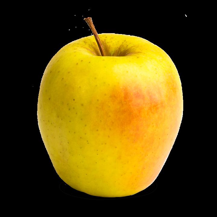Apple Holler Gingergold Apple