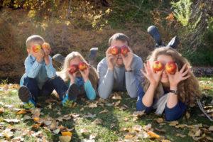 Apple Holler Visitor Guidelines, Plan your visit
