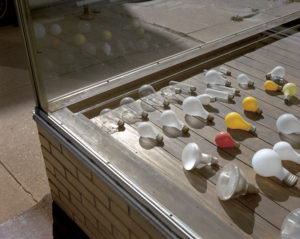 The glassed-in corner of a shop is shown, with several varieties of lightbulbs laid on wood paneling in rows in the shop window. Reflections of the lightbulbs are visible in one of the glass panes.