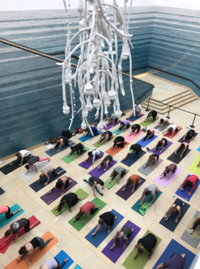 image of yoga at the blanton