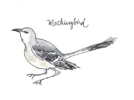 five austin birds for ellsworth kelly s austin austin s blanton